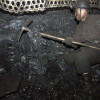 China's Appetite for Overseas Coal Roaring in the Year of Tiger